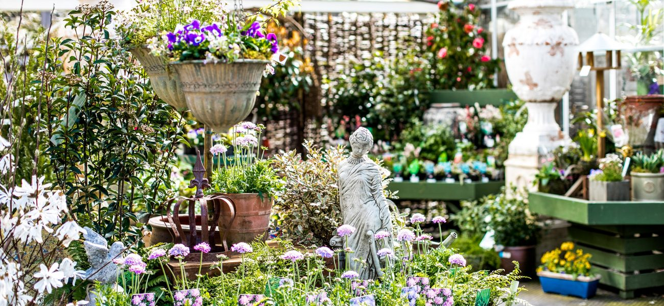 Hanging baskets, statues and spring flowers at the Duchy Nursery.